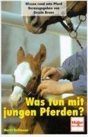 Marlit Hoffmann: Was tun mit jungen Pferden?